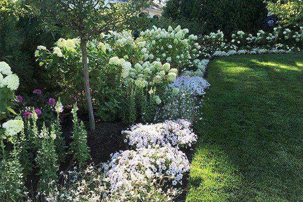 600x400-flowers-lawn